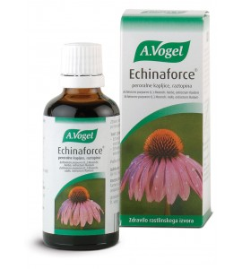 Echinaforce, peroralne kapljice, 100mL (A. Vogel)